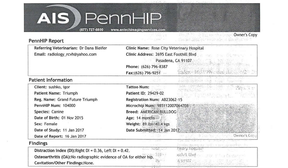 PennHip Test Results: 0.36 | 0.42